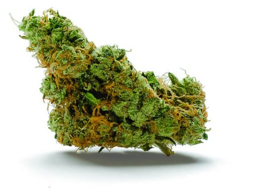 gmo_cookies_weed pic